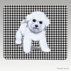 Bichon Pup Houndstooth Mouse Pad