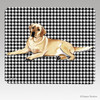 Lying Down Yellow Lab Houndstooth Mouse Pad