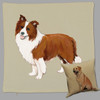 Zeppa Studios' Brown and White Border Collie Throw Pillow