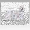 Komondor Message Cutting Board - Rectangular