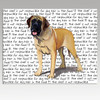 Mastiff Message Cutting Board - Rectangular
