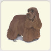 Amercian Cocker Spaniel Chocolate Coasters