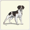 Liver & White Brittany Coasters
