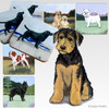 Airedale Puppy Scenic Coasters
