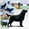 Black Lab Standing Scenic Coasters