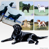 Black Lab Lying Scenic Coasters