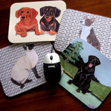 10 Cool Back to School Gifts for Pet Lovers