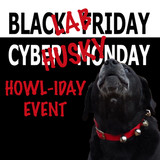 It's A Black Lab Friday-Cyber Husky Monday Howliday Event!