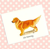 How to Personalize Your Fur Children Note Cards
