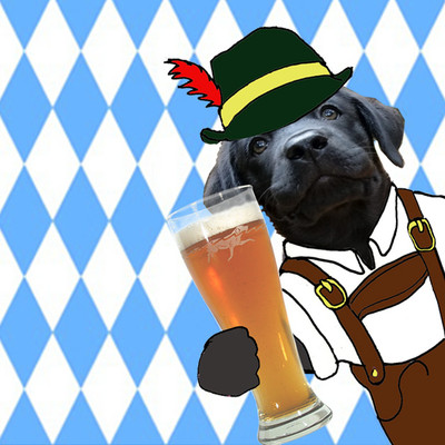It's time for our Dogtoberfest Giveaway!