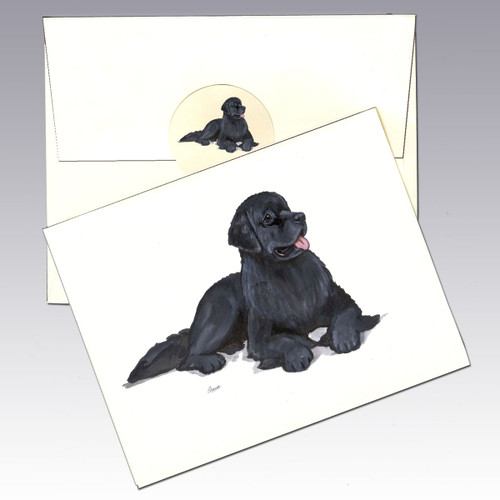 Newfoundland Note Cards