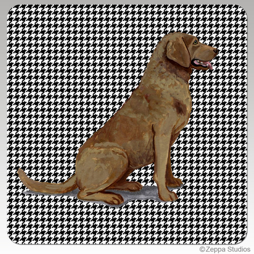 Chesapeake Bay Retriever Houndzstooth Coasters