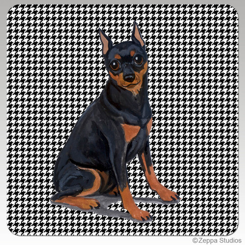 Miniature Pinscher Houndzstooth Coasters