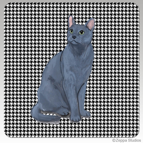 Russian Blue Cat Houndzstooth Coasters