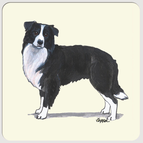 Border Collie Beverage Coasters