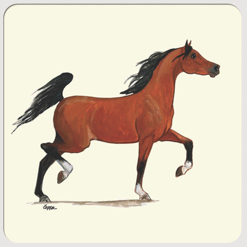 Arabian Horse Beverage Coasters