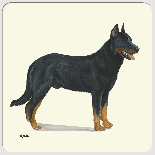Beauceron Beverage Coasters