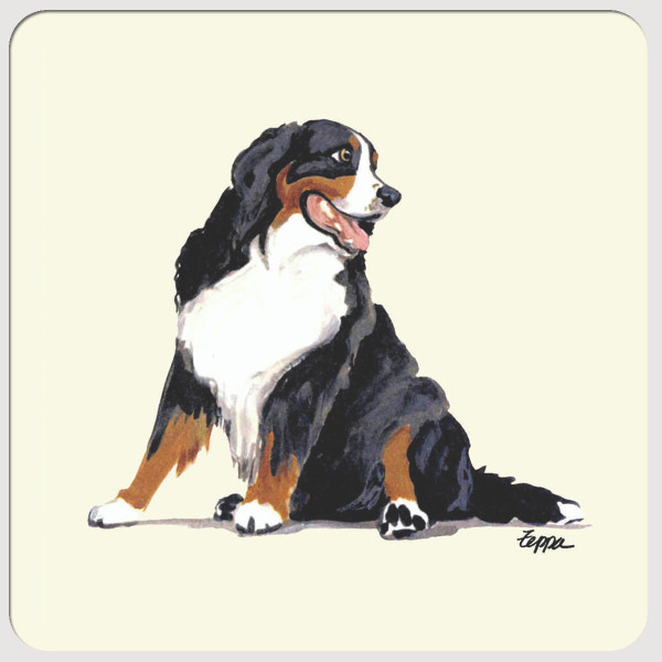 Bernese Mountain Dog Beverage Coasters