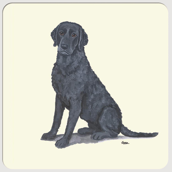 Curly Coated Retriever Beverage Coasters
