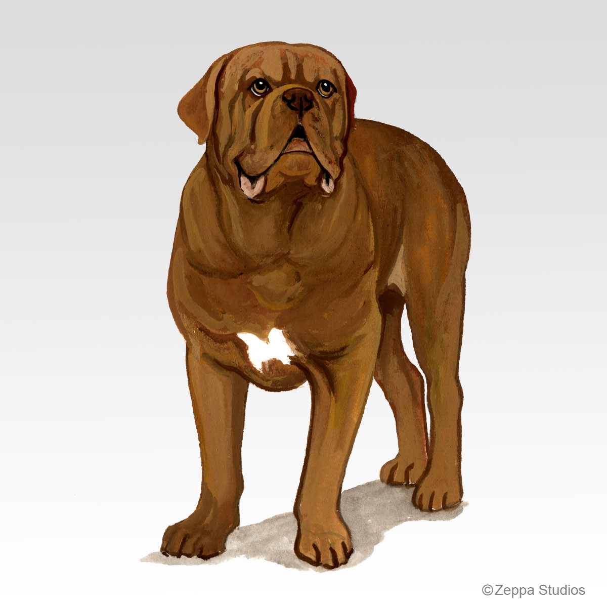 Dogue de Bordeaux Gifts