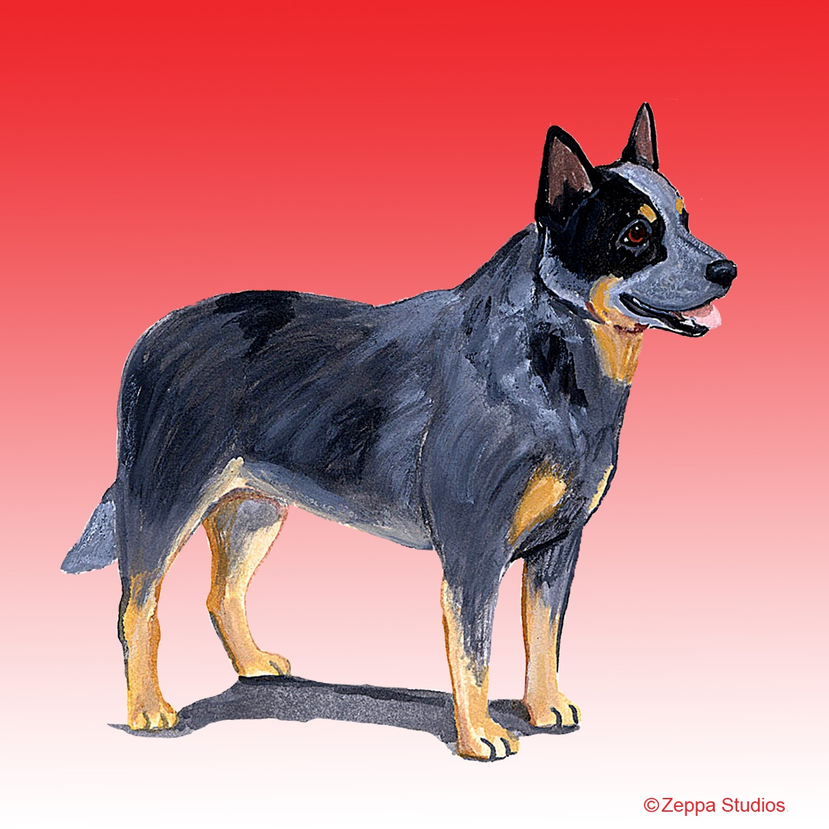 Australian Cattle Dog Gifts