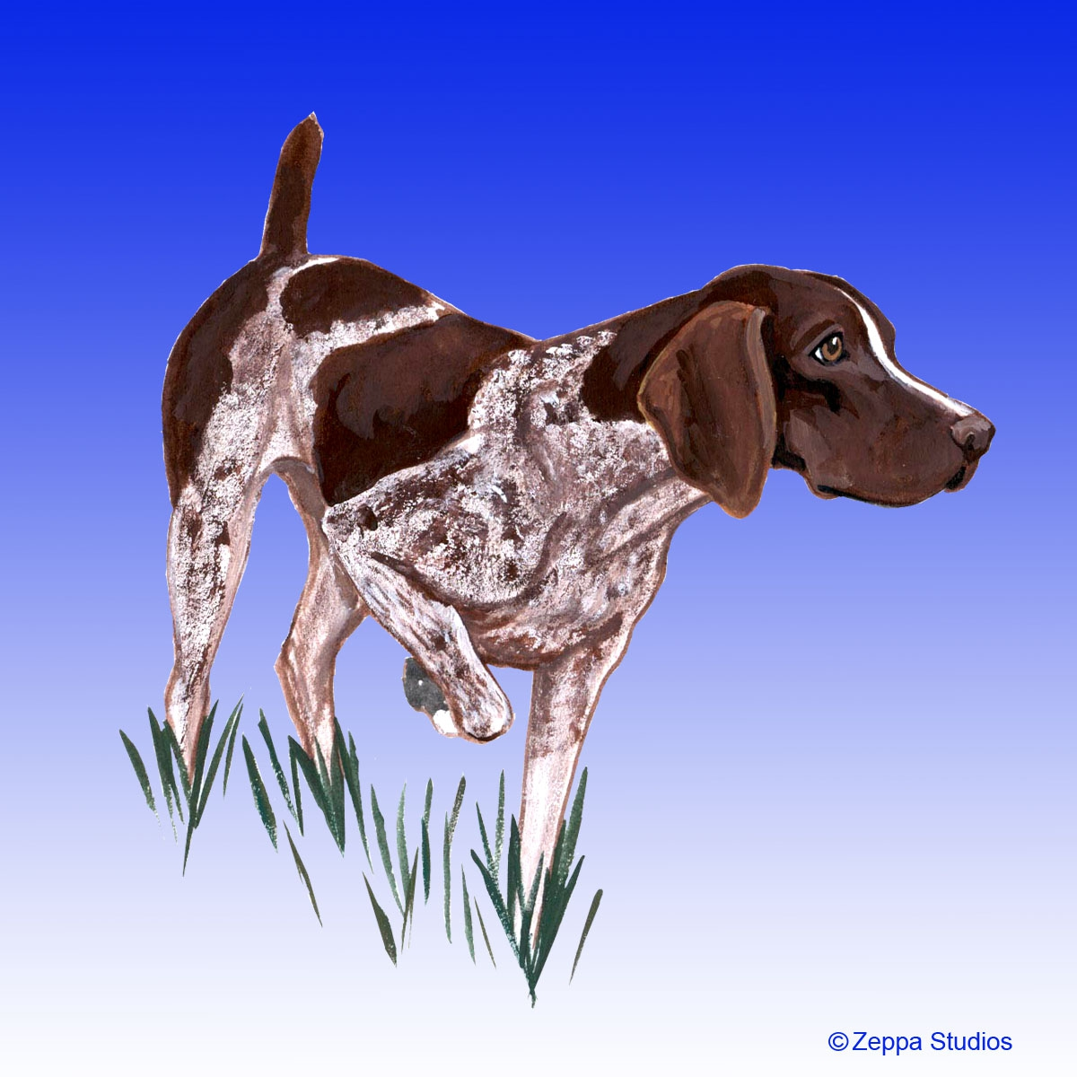 German Shorthair Pointer Gifts