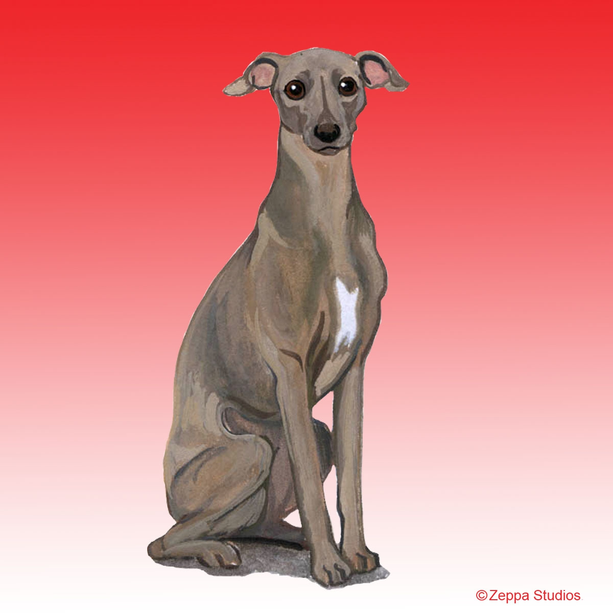 Italian Greyhound Gifts