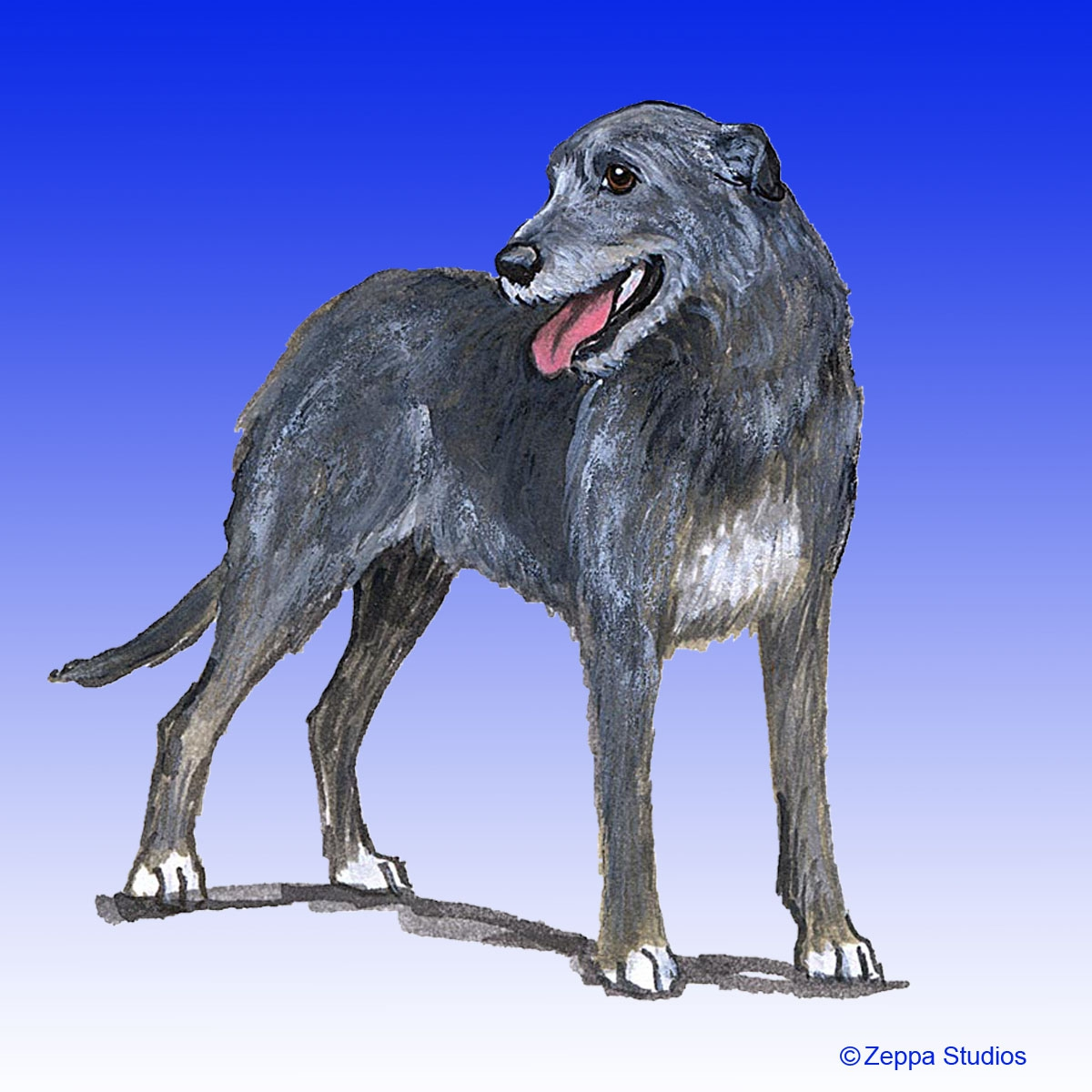 Irish Wolfhound Gifts