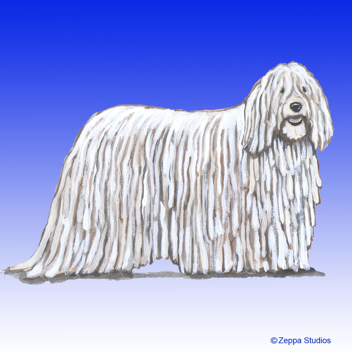 Komondor Gifts