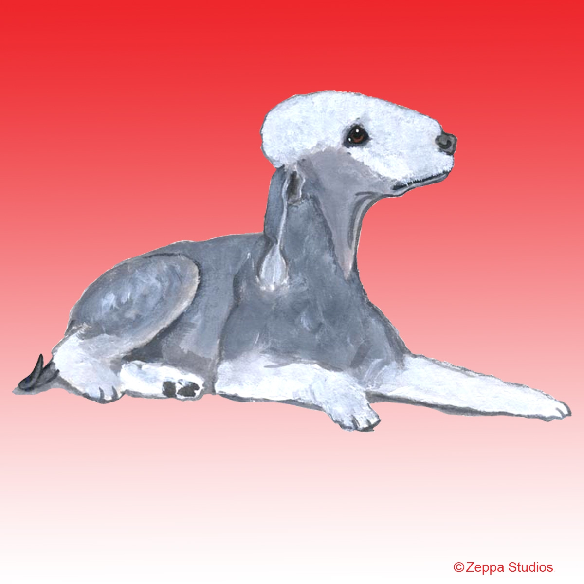 Bedlington Terrier Gifts