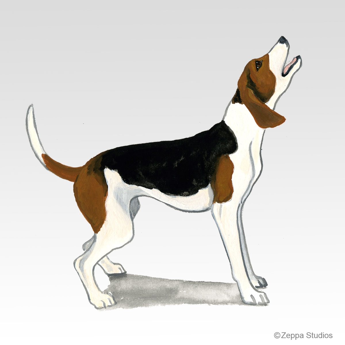 Treeing Walker Coonhound Gifts