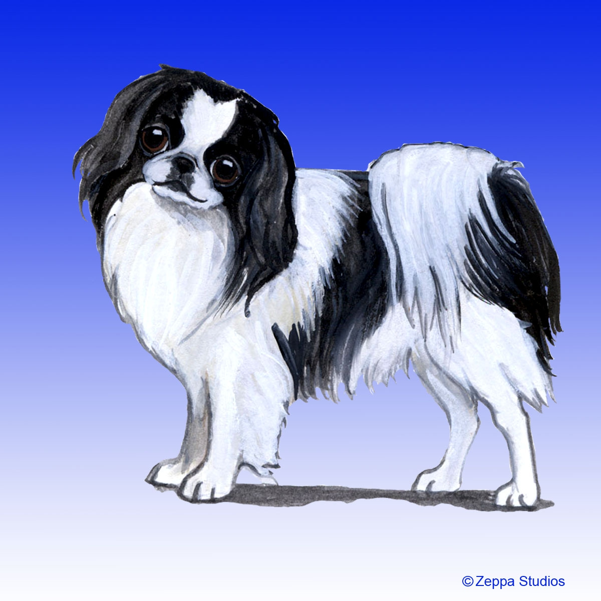Japanese Chin Gifts