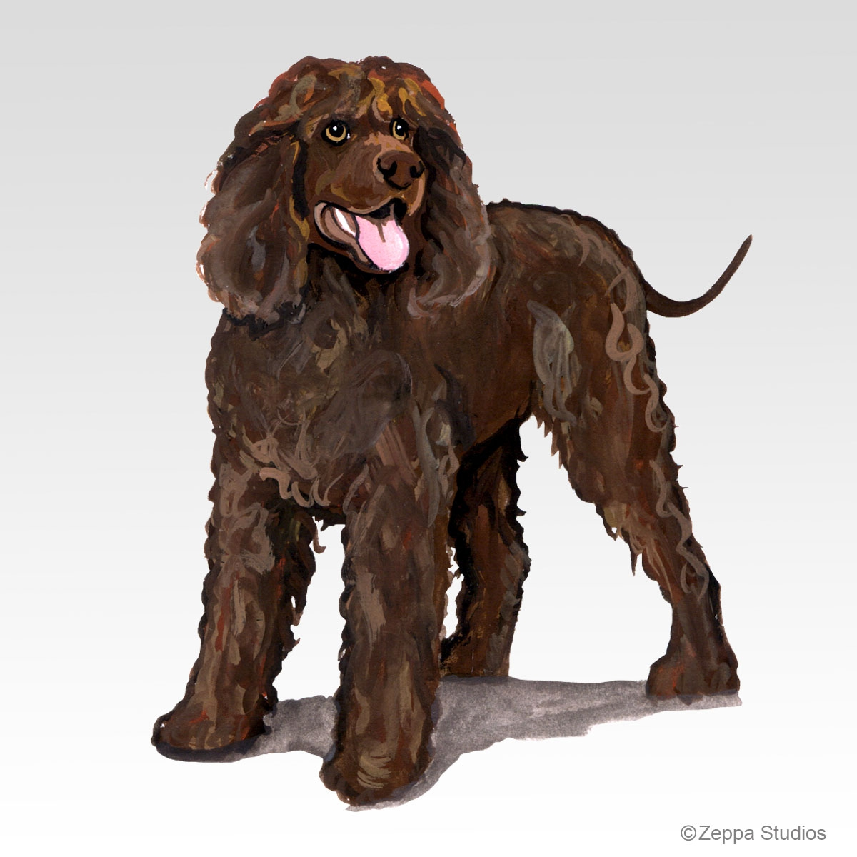Irish Water Spaniel Gifts