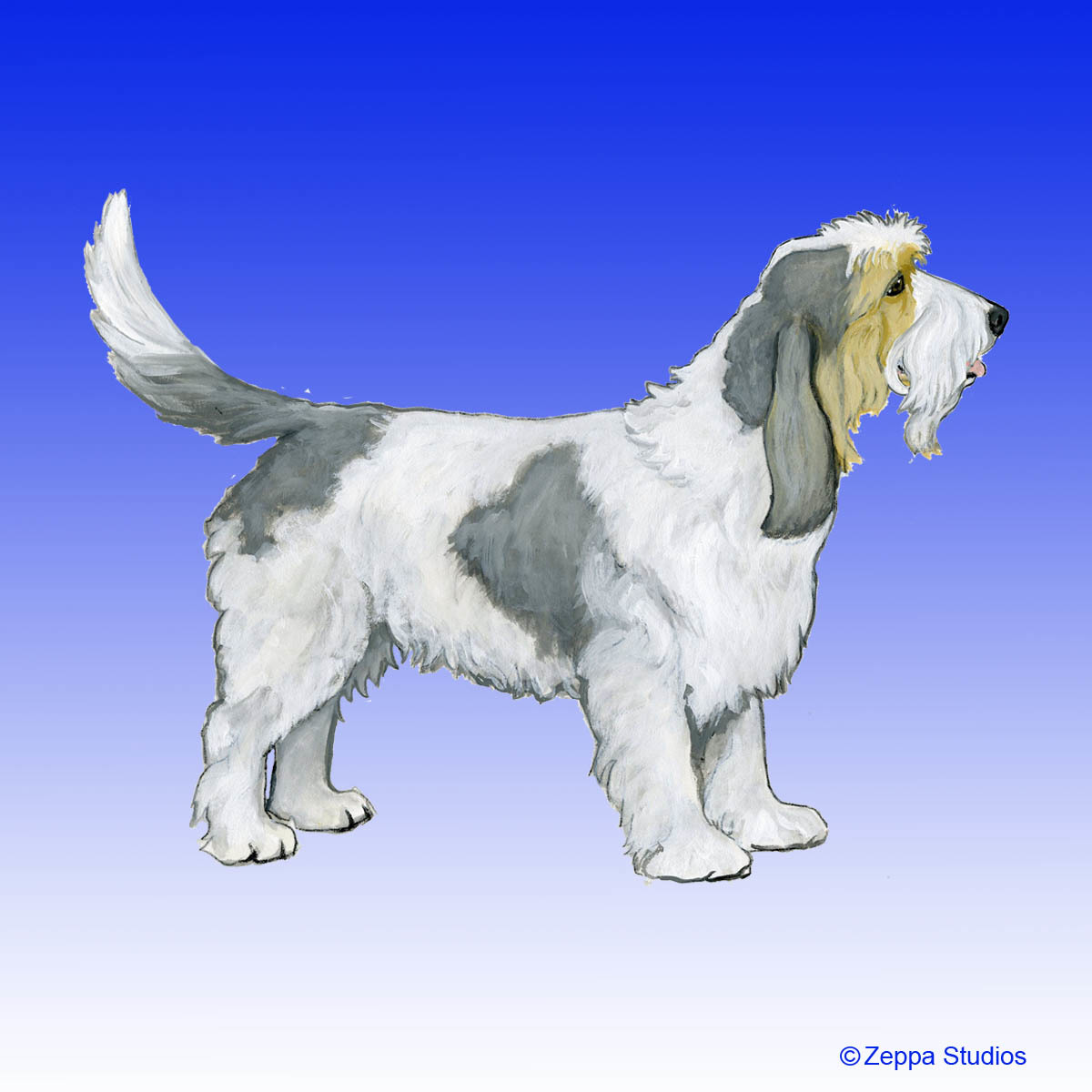 Grand Basset Griffon Vendeen Gifts