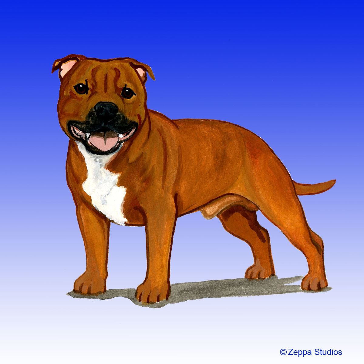 English Staffordshire Terrier Gifts