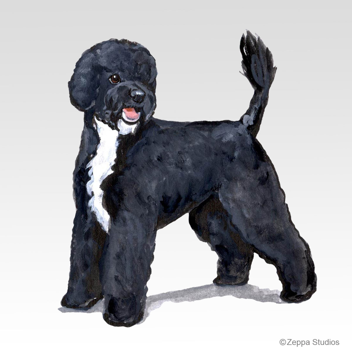 Portuguese Water Dog Gifts
