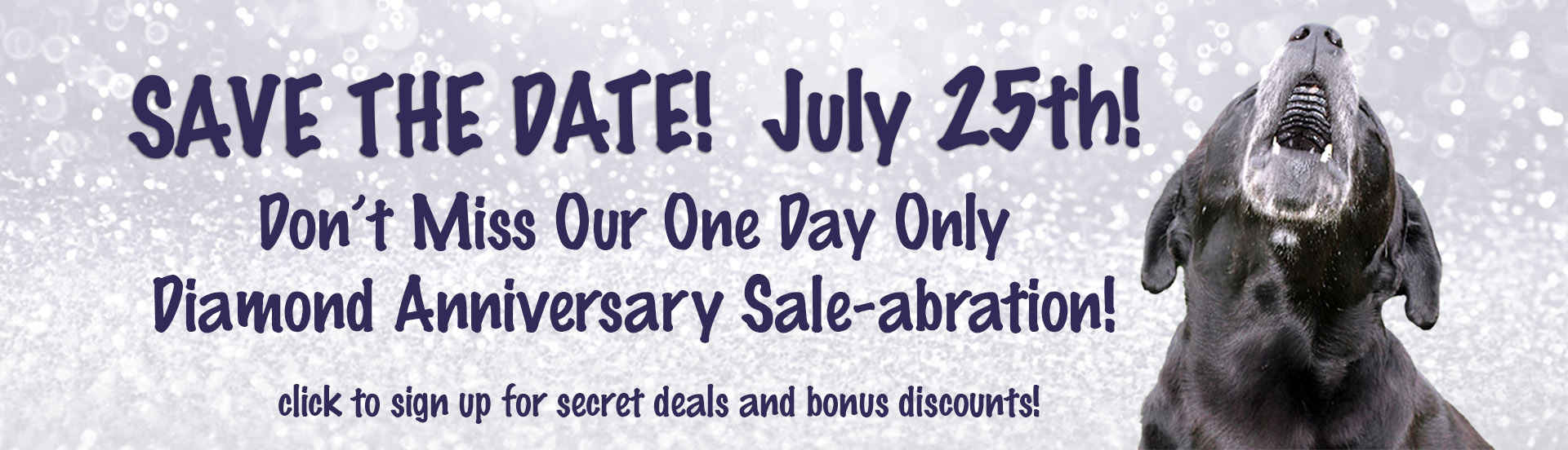 Join us for our one day anniversary sale July 25th!