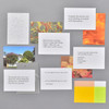 Calm Pocket Prompt Cards, some cards - front and back