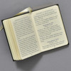 Pages from The United States Constitution