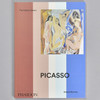 Front cover of the book Picasso: The Colour Library