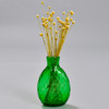 Pocket Bottle, Green, with dried flowers