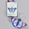 Peacock Butterfly Wall Decor, box and butterfly