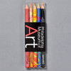 Philadelphia Museum Of Art Magic Pencils