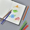 The Psychology Of Colour Pencil Set example of use