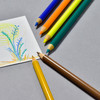 Faber-Castell Polychromos Color Pencils 111th Anniversary Tin example of use