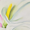 POSTER O'KEEFFE TWO CALLA LILIES ON PINK - detail