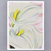POSTER O'KEEFFE TWO CALLA LILIES ON PINK