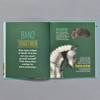 Armor & Animals interior pages
