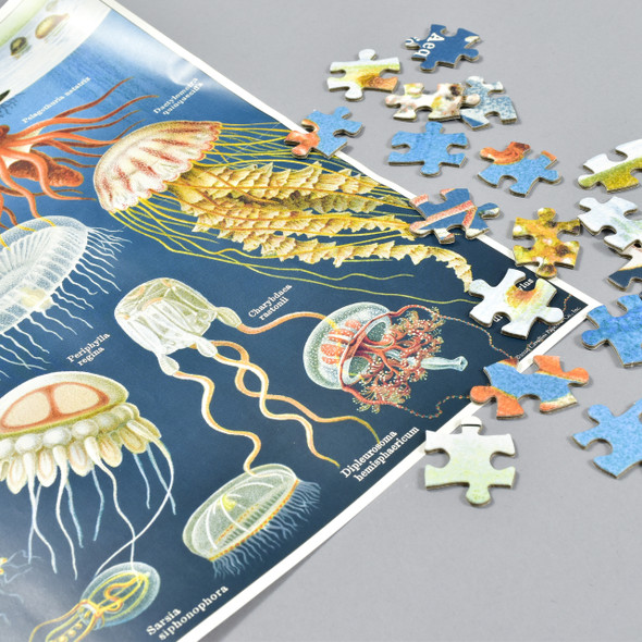 Jellyfish Vintage Puzzle, puzzle map and pieces
