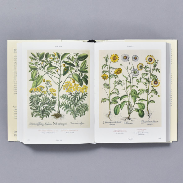 Interior of book Florilegium: The Book of Plants